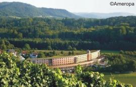 Silvester Badische Weinstraße Durbach Hotel Vier Jahreszeiten