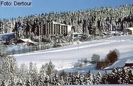 Silvesterangebot Haus Bayerwald